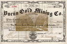 Buena Gold Mining Co.